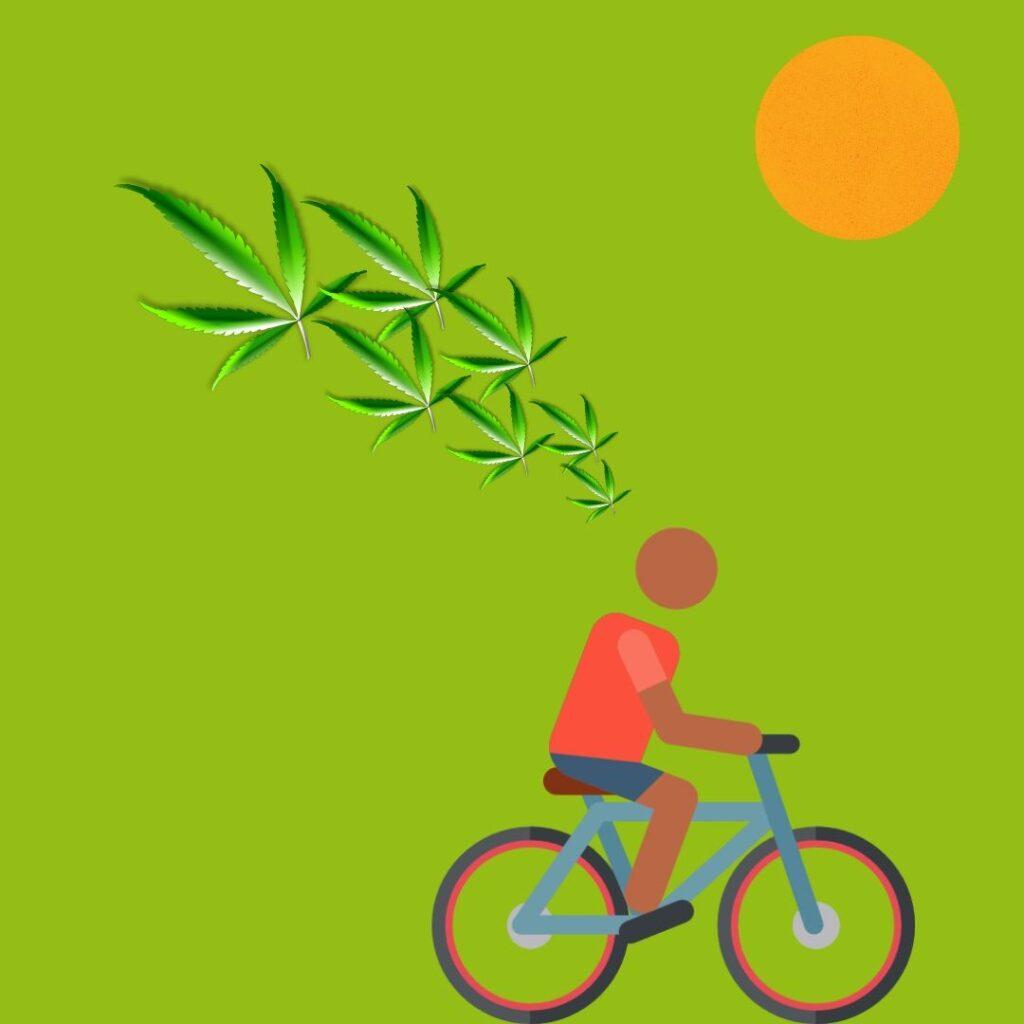 andar en bicicleta nos hace felices