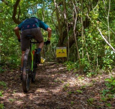 Punta Venado MTB bike park